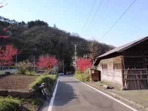 P5049019_2